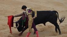Pamplona 14.7.2013